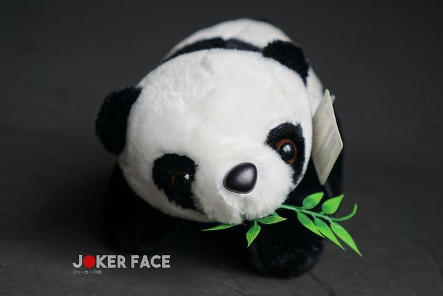 Gấu bông Panda 20cm