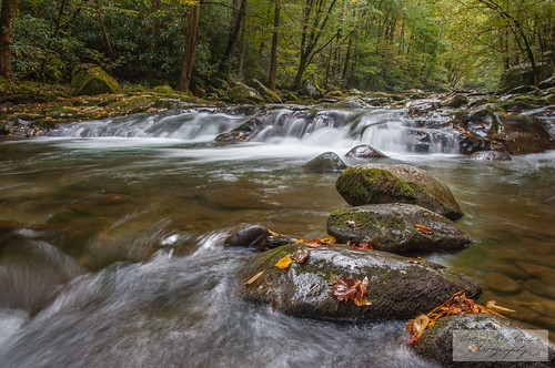 autumn fall stream northcarolina appalachia bigcreek