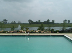Swimming pool w/view at Equestrian Lakes