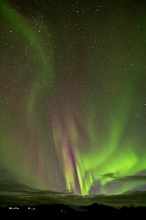 Aurora borealis tonight
