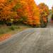 Autumn Ramble 10 by Anvilcloud