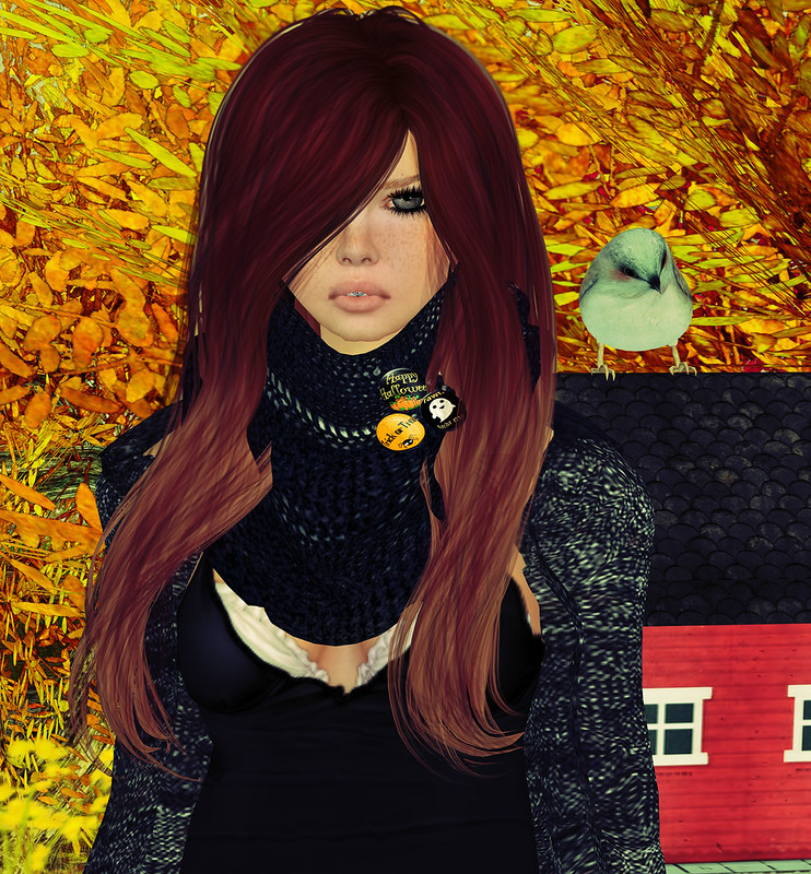 Autumn Hunt@Iren