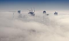 Misty Monday / Rotterdam /Euromast
