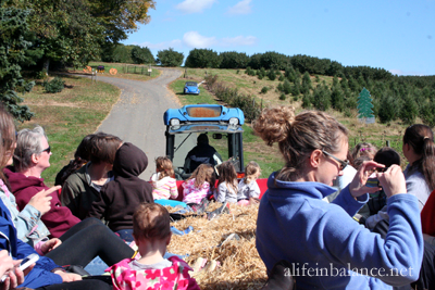 linvilla_orchards_3
