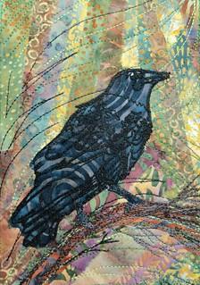 ruffled crow