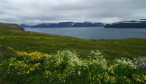 Day 9: At Jökulfirðir fjord