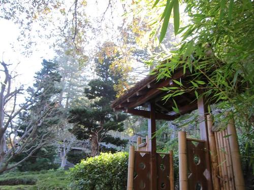 Hakone Japanese Gardens, Saratoga, CA IMG_2346
