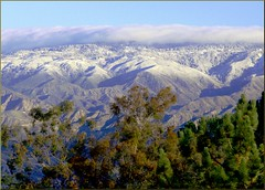 Mts from Caroline Park, Redlands, CA 12-30-12k