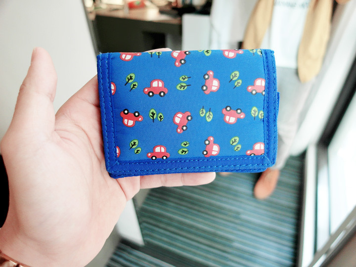 cute diao wallet for the trip