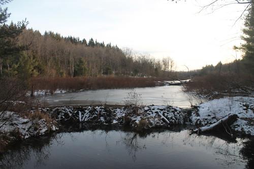 state dam beaver land albany unit capitalregion heldeberg andyarthur albanyunitheldebergstateland