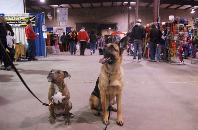 Pet Expo Outing
