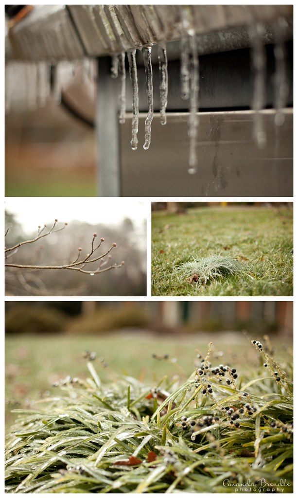 Ice Storm 2013 | Amanda Brendle Photography - Raleigh, NC Photographer