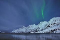 Northern Lights near Tromso, Norway