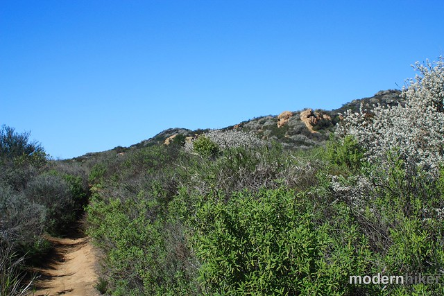 Temescal Canyon to Skull Rock 25