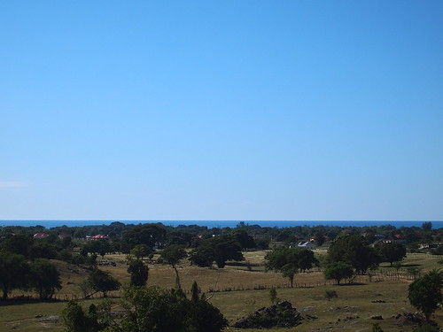 landscape scenery view jamaica blackriver caribbean stelizabeth westindies