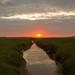Sunset @ Texel. #slufter #texel #texels #texelpics #nature #natuur #foto #photo #justin #sinner #pictures #reservate #holland #wadden #eiland #island #northholland #canon #sun #zon #sunset #Zonsondergang #water #clouds #mud #modder #gras #plant #stunning
