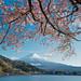 Fujikawaguchiko Lake, Mt. Fuji  by Shirly Hamra