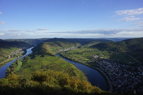 Neef, Mosel Valley