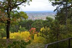 Harzberg 13.10.2012