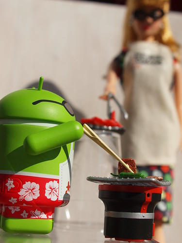 Android BBQ & Trophy Wife