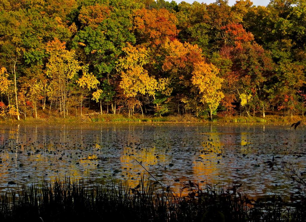 Kent Lake, Late afternoon