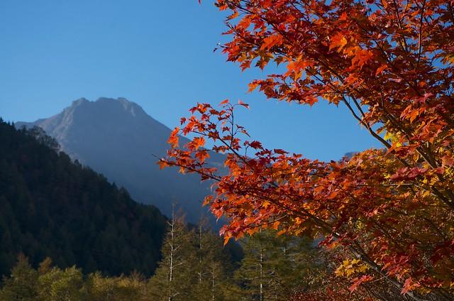 秋の八ケ岳2012
