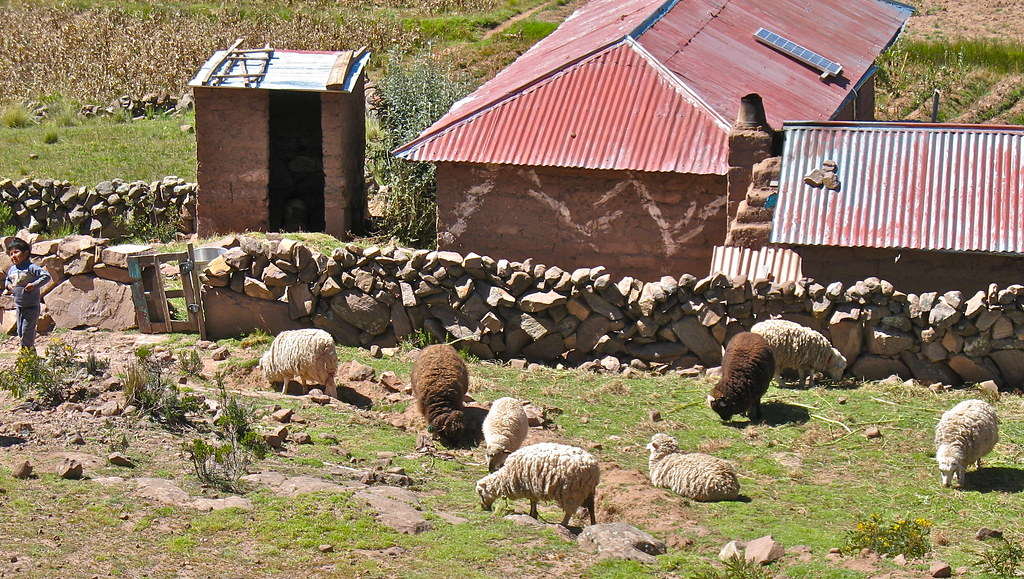 Sheep farm and house on Isla Taquile,Peru