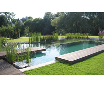 Clear_Water_Revival_Natural_swimming_pools_swimming_ponds_7