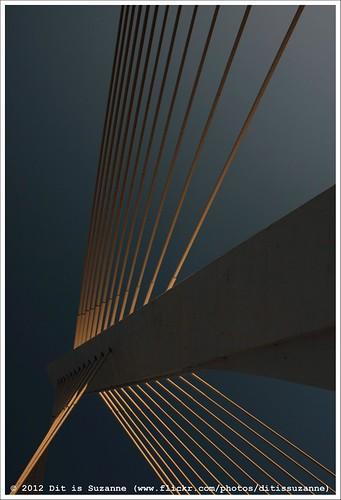 brug montenegro verkeer crnagora podgorica milenniumbridge мост cablestayedbridge views200 черногория img1037 tuibrug ©ditissuzanne canoneos40d црнагора подгорица мостмиленијум sigma18250mm13563hsm 22092012