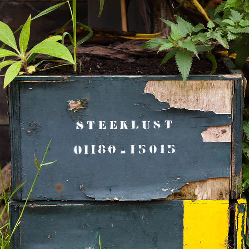 Stechlust; copyright 2012: Georg Berg
