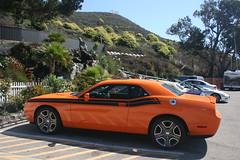 stock car racing(0.0), automobile(1.0), automotive exterior(1.0), dodge(1.0), vehicle(1.0), performance car(1.0), automotive design(1.0), dodge challenger(1.0), classic car(1.0), land vehicle(1.0), luxury vehicle(1.0), muscle car(1.0),