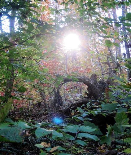 mystic_lensflare