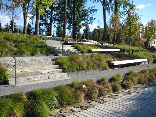 Grasses steps