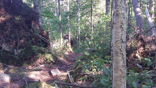Trails to Galehead