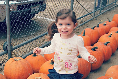 Ava Pumpkin Patch