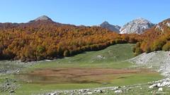 Lago Vivo (Parco Nazionale d'Abruzzo)