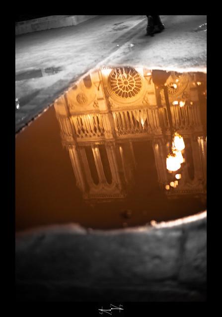 Cathédrale Notre Dame de Paris  by D.F.N.