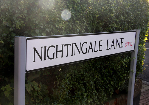 nightingale lane