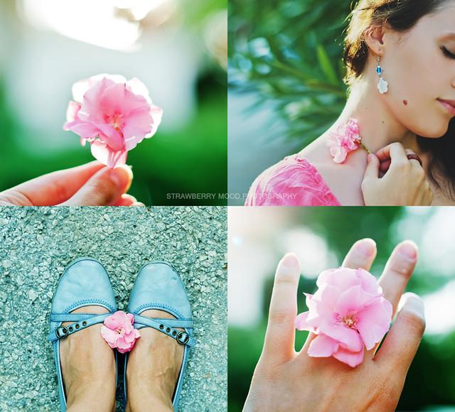 Light and flower