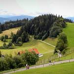 Pfänder am Bodensee