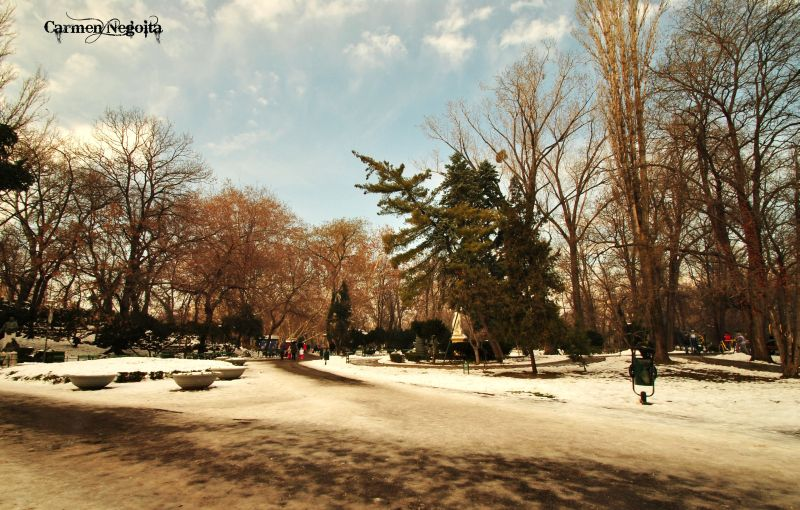 Bucuresti_Parcul Cismigiu_1