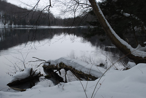 Lake in winter