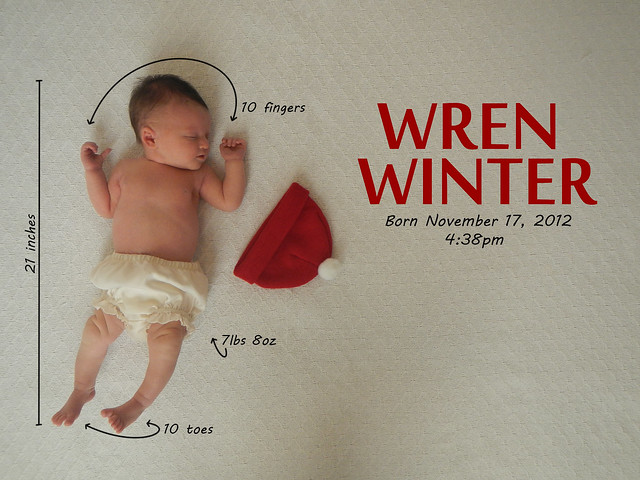 Wren Winter - Birth Announcement