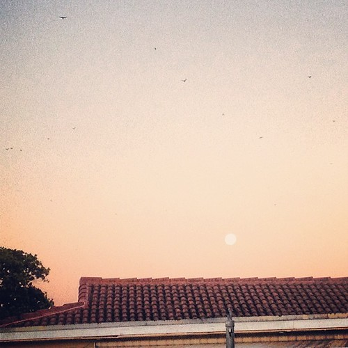 Beautiful full #moon over my backyard during this morning's #sunrise!
