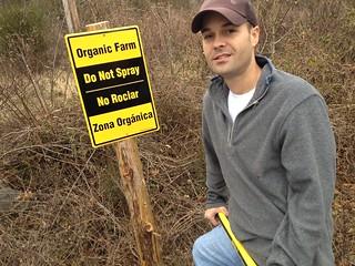 zona organica