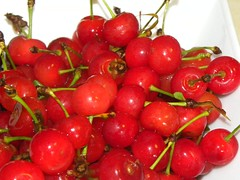 cherry, malpighia, produce, fruit, food, lingonberry,