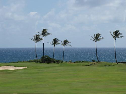 Kauai Lagoon Golf Club 1282