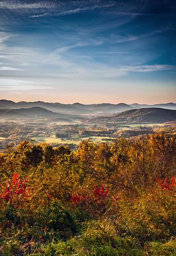 autumn portrait usa mountain tree fall leaves sunrise virginia us foliage va leafs blueridge skynoir