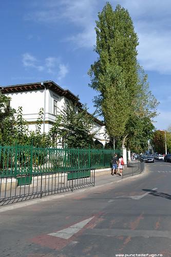 scoala centrala de fete
