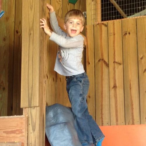 Climb-y monkey